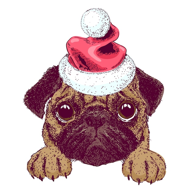 a0a4fe7728e Vector sketch of cute pug puppy with santa hat. new year christmas ...