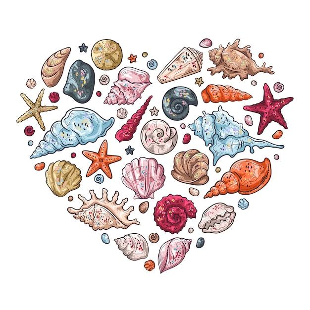 Vector sketching illustrations. different types of seashells. Premium Vector