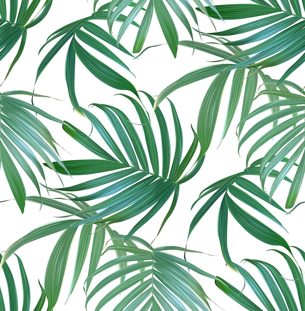 Vector tropical palm leaves seamless pattern. Premium Vector