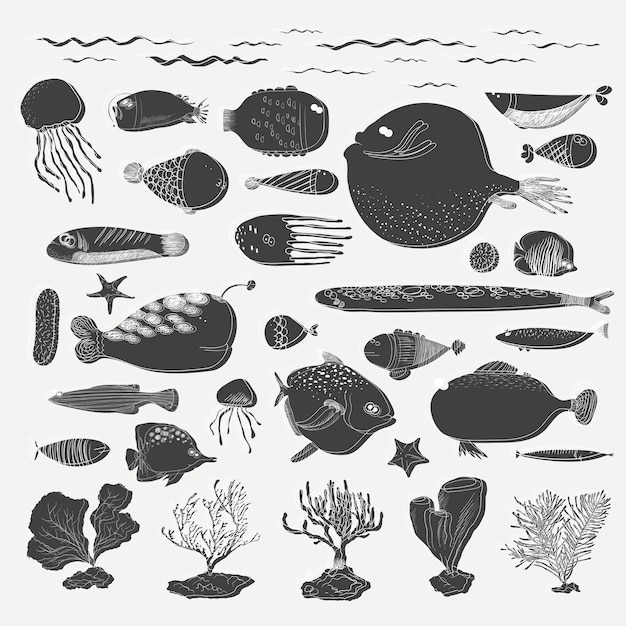 Vector of underwater creatures Free Vector