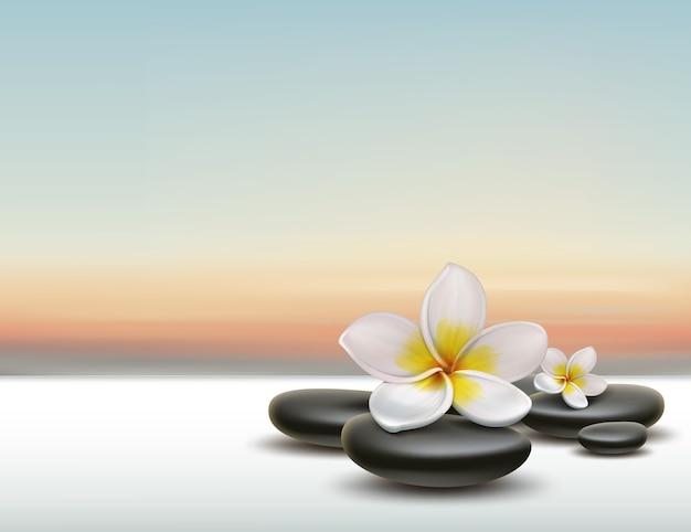 Вектор белый цветок plumeria с черными камнями дзэн спа на фоне заката Бесплатные векторы