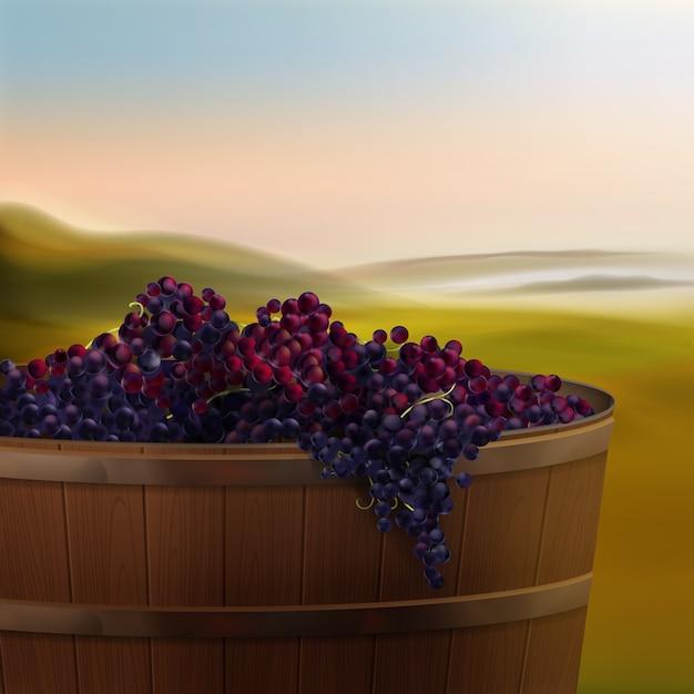Tino di legno di vettore dell'uva rossa per il vino nella valle isolata su priorità bassa Vettore gratuito