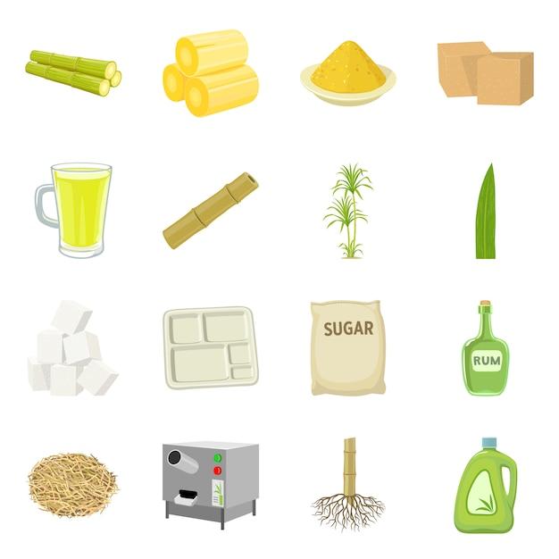 Изолированный объект знака сахарного тростника и завода. собрание сахарного тростника и органического запаса vector иллюстрация. Premium векторы