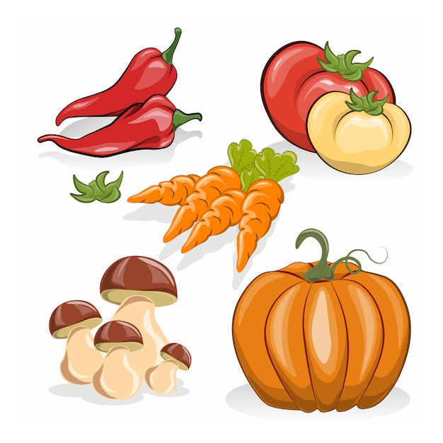 Free Vector   Vegetable design collection