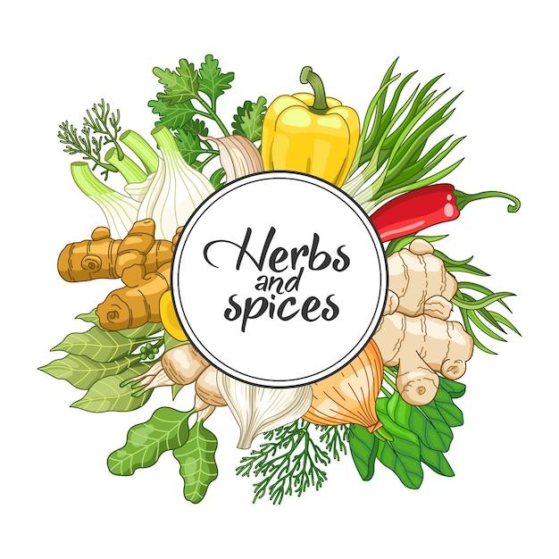 Овощной круглый дизайн со специями и зеленью. декоративная красочная композиция с шрифтовым дизайном Premium векторы