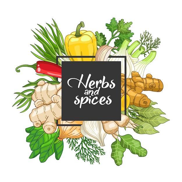 Овощной квадратный дизайн со специями и зеленью. Premium векторы