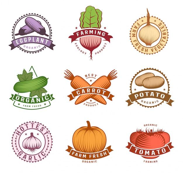 Набор красочных этикеток овощей Бесплатные векторы
