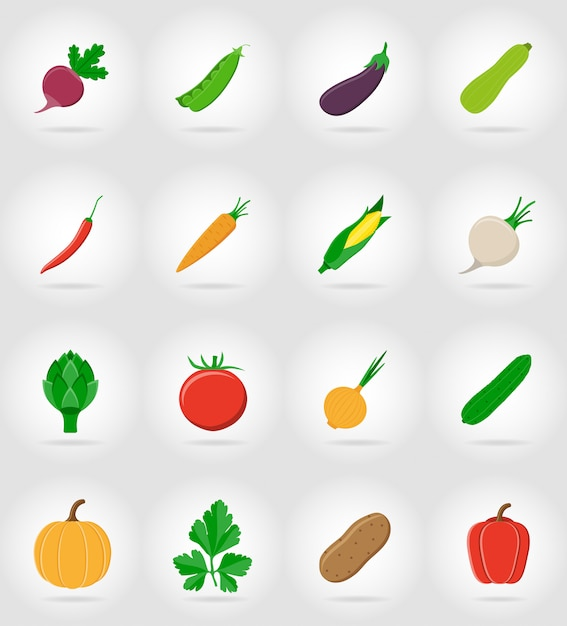 Vegetables flat icons set with the shadow vector illustration Premium Vector