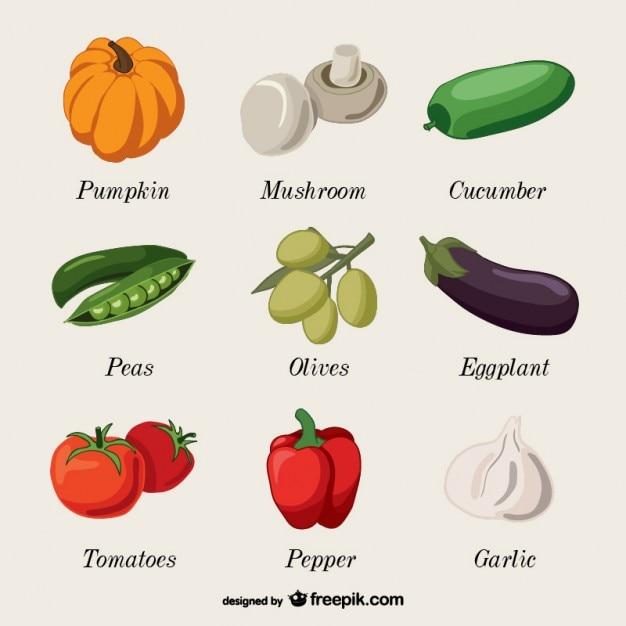 Vegetables name collection art vector free download - Verduras lista de nombres ...