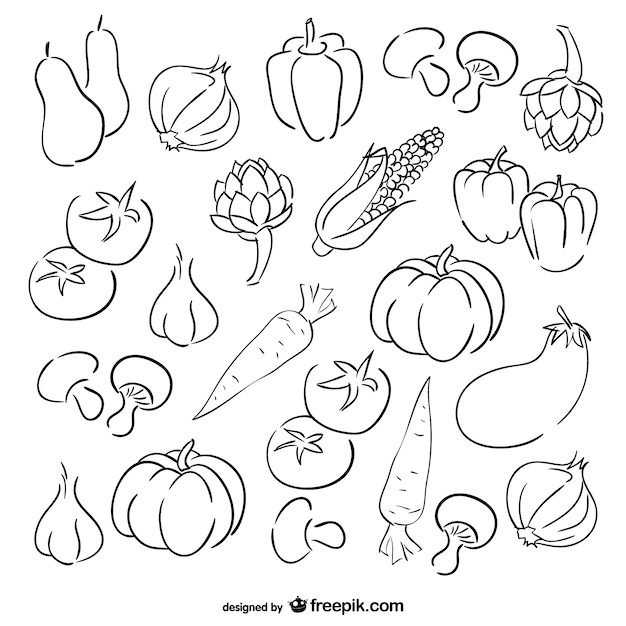 Vegetables Sketch Galleryhipcom The Hippest Galleries