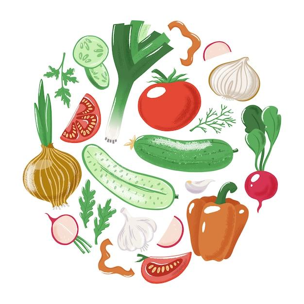 Vegetables - tomato cucumber bell pepper onion garlic leek parsley radish Premium Vector