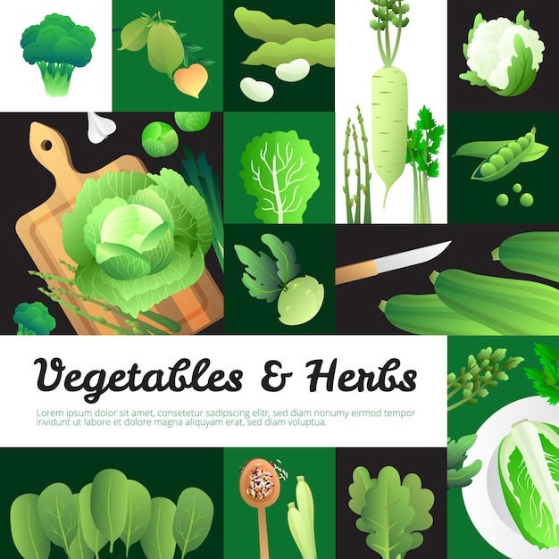 Vegetarian food banners poster with organic fresh  cabbage and green vegetables Free Vector