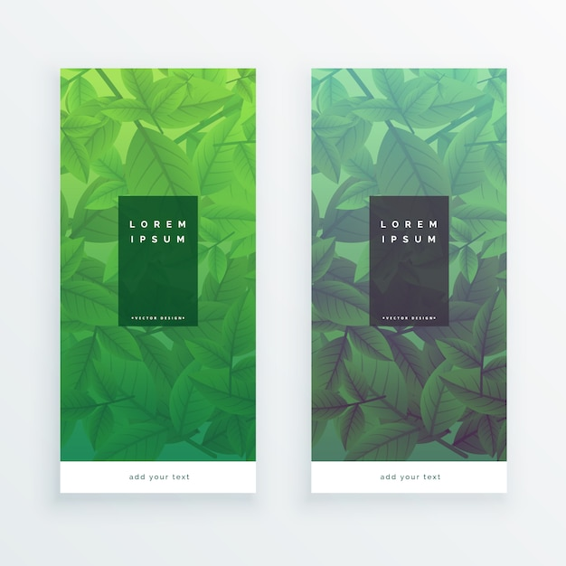 vertical banners of green leaves Free Vector