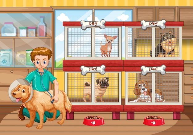 Vet checking up many dogs in hospital Free Vector