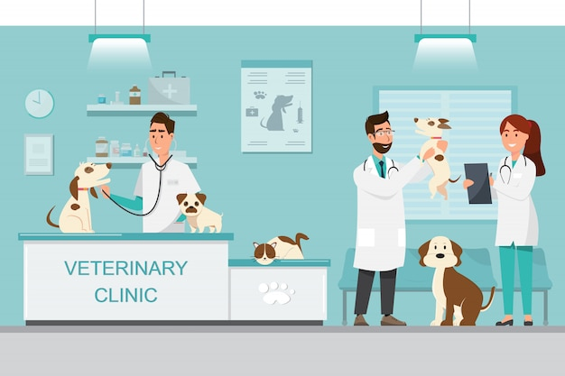 Veterinarian and doctor with dog and cat on counter in vet clinic Premium Vector