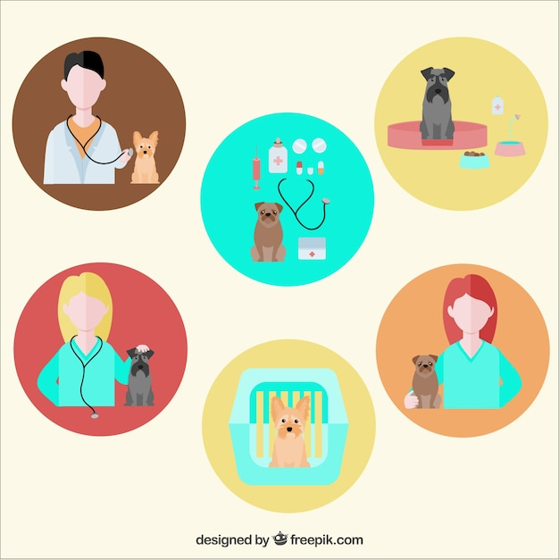 Veterinarian icons Free Vector