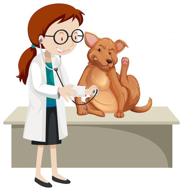 病気の動物を持つ獣医 Premiumベクター