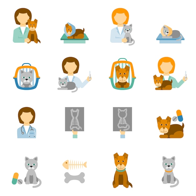 Veterinary clinic practice flat icons set Free Vector