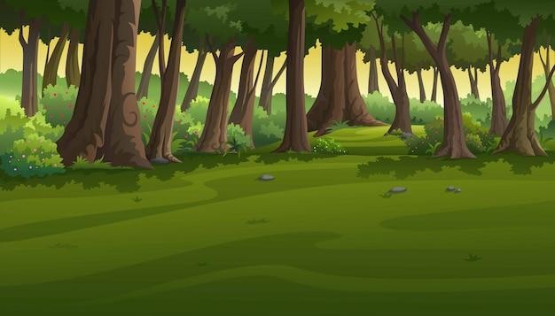 Вид в лесу на закате. Premium векторы