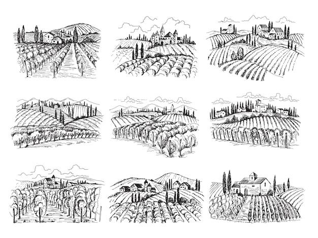 ブドウ園の風景。家のある農場のブドウ畑農業手描きs Premiumベクター