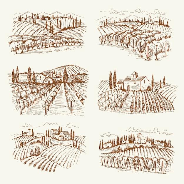 ブドウ畑の風景です。フランスやイタリアのヴィンテージ村ワインブドウ畑手描きイラスト Premiumベクター