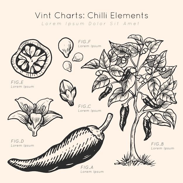 Винт диаграммы чили элементы рисованной Бесплатные векторы