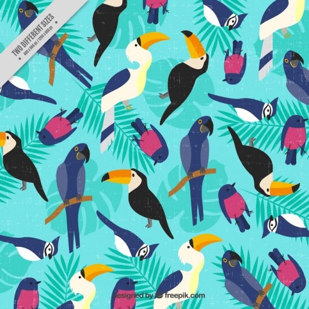 Vintage background with tropical birds