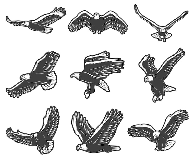 Vintage beautiful flying eagles set Free Vector