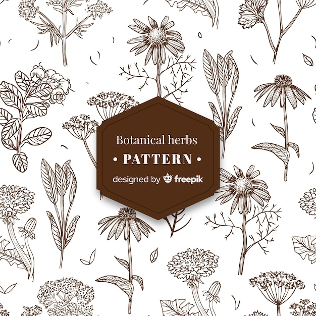 Vintage botanical pattern Vector | Free Download