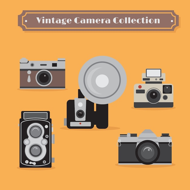 Vintage Camera Collection - Tiffany Teen Free Prono-5265