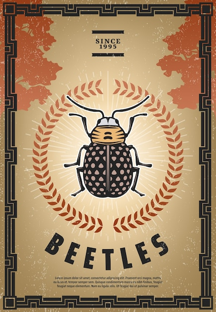 Vintage colored beetle poster with inscription small bug in center of laurel wreath and sunburst Free Vector