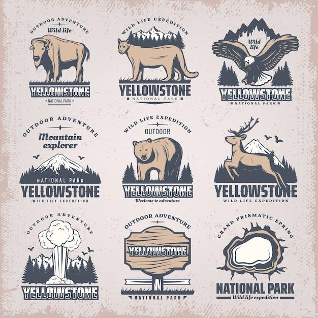 Винтажные цветные эмблемы национальных парков с редкими дикими животными, природные пейзажи, гейзерная доска, грандиозный призматический источник, изолированные Бесплатные векторы