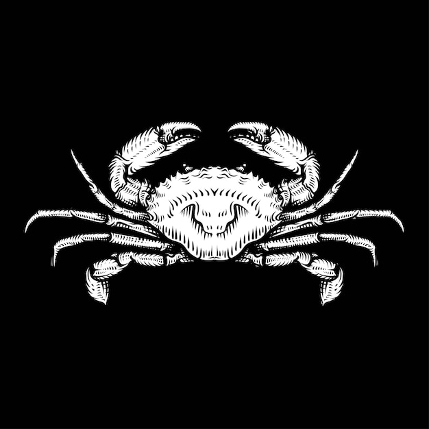 Vintage crab drawing. hand drawn monochrome seafood illustration. Premium Vector