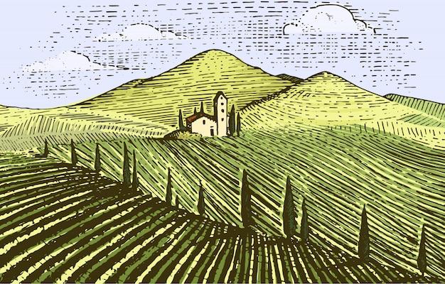 ヴィンテージが刻まれた、手描きのブドウ畑の風景、タスカニーフィールド、古い探しているスクラッチボード Premiumベクター