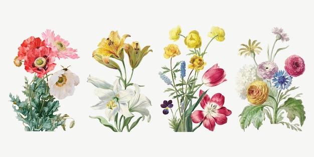 Vintage flower botanical illustration set Free Vector
