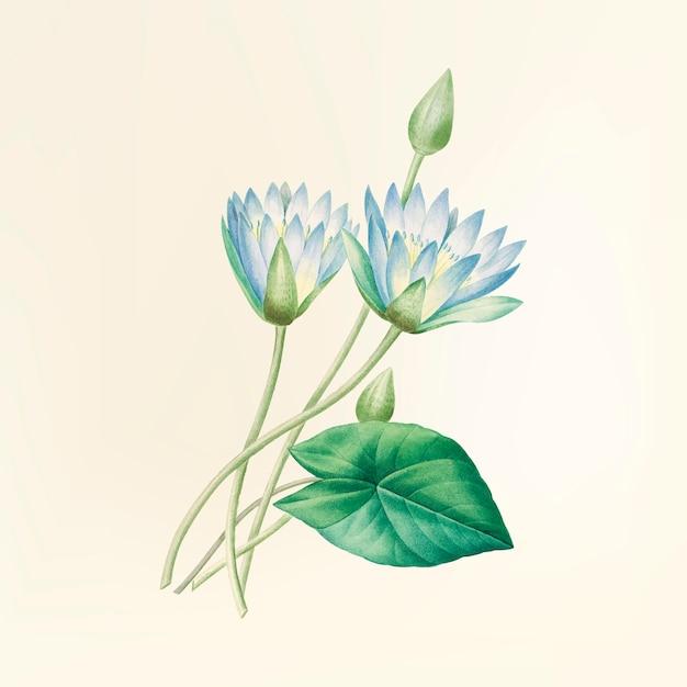 Illustrazione di fiori d'epoca Vettore gratuito