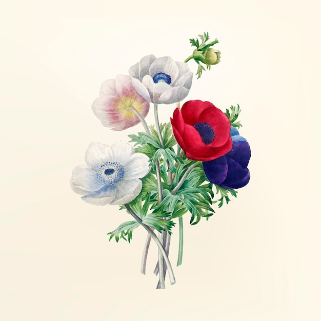 Vintage flower illustration Free Vector