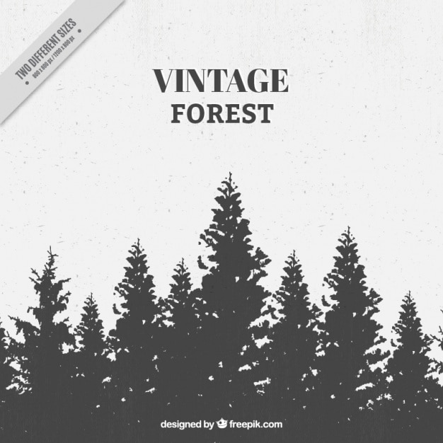 Vintage forest with tree silhouettes Premium Vector