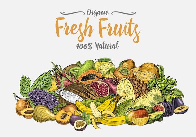 Vintage, hand drawn fresh fruits background, summer plants, vegetarian and organic citrus and other, engraved. pineapple, lemon, papaya, pitaya, maracuya and bananas. Premium Vector