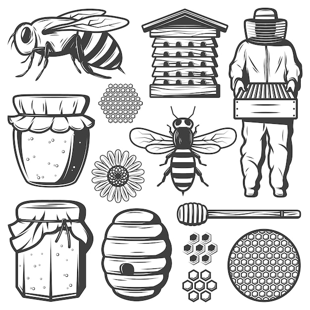 Vintage honey elements collection with bee beehive dipper stick flower honeycombs beekeeper pot jar isolated Free Vector