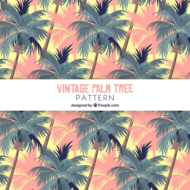 Vintage pattern of palm trees Free Vector