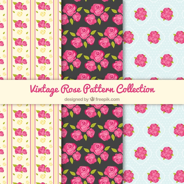 Vintage patterns with pink roses Free Vector