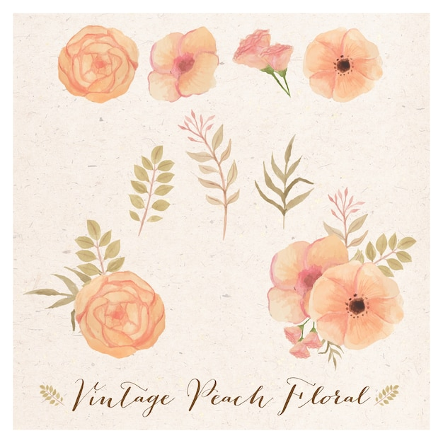 Vintage peach floral Premium Vector