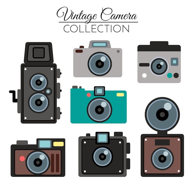 Vintage professional camera collection