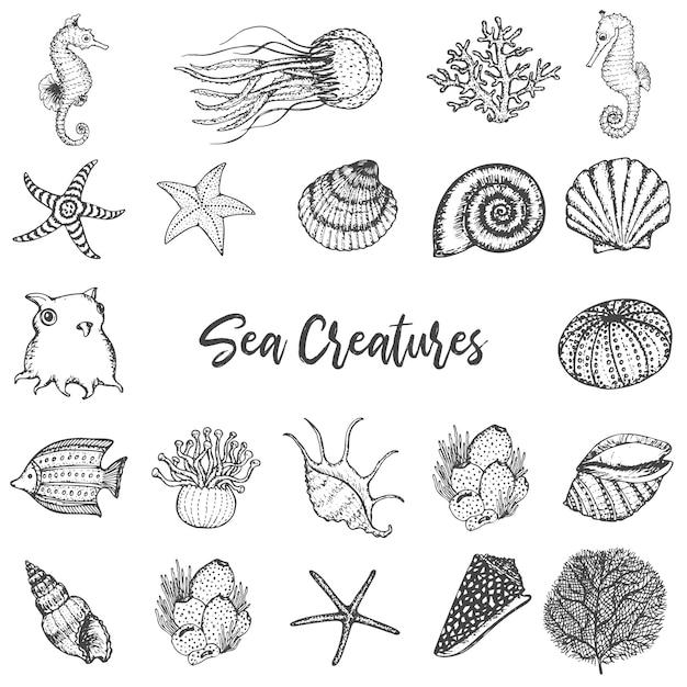 Морские животные и существа рисованной vintage set. Premium векторы