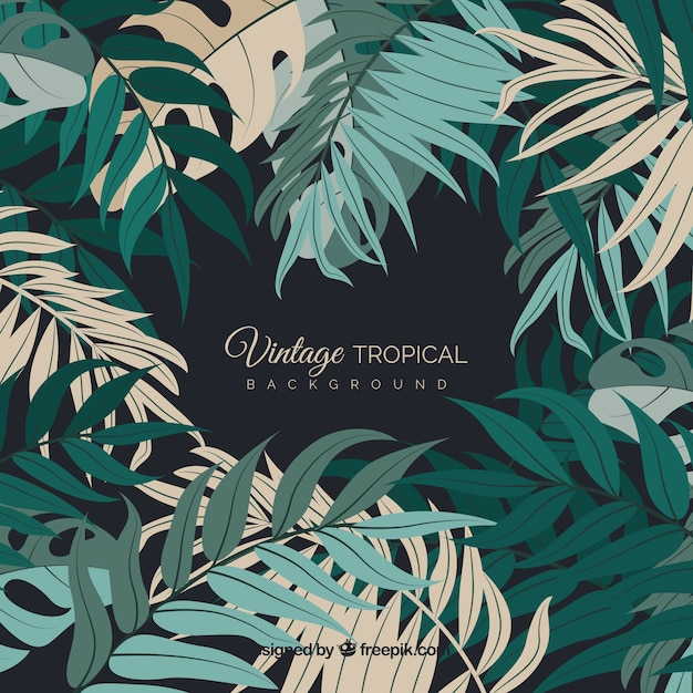 Free Vector Vintage Tropical Leaves Background 115,000+ vectors, stock photos & psd files. vector vintage tropical leaves background