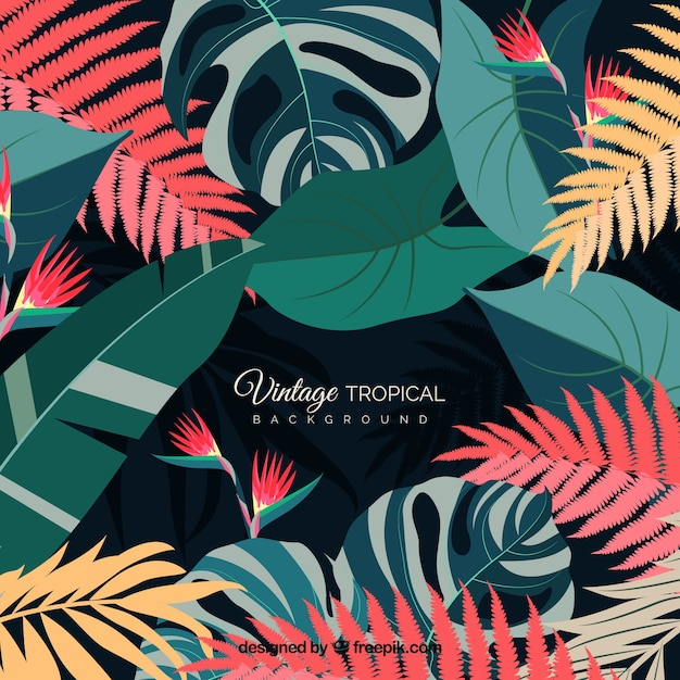 Vintage tropical leaves background Free Vector
