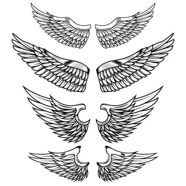 Старинные крылья на белом фоне. элементы для логотипа, этикетки, эмблемы, знака, торговой марки. иллюстрации. Premium векторы