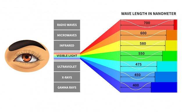 Visible Light Spectrum Template Premium Vector