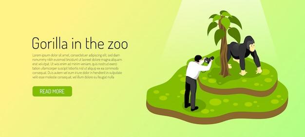 Ospite allo zoo durante la fotografia della gorilla sull'insegna orizzontale di verde giallo isometrica Vettore gratuito